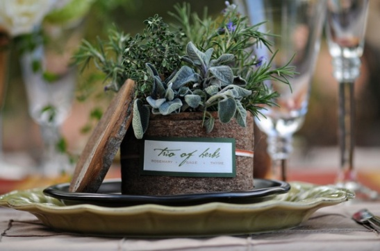 chocolate-brown-plates-sage-scalloped-chargers-tuscan-wedding